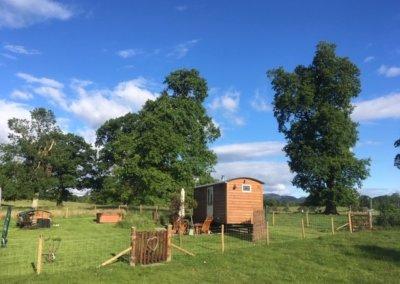 A lovely sunny hut day